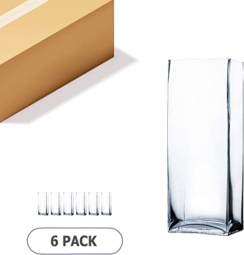 WGV Rectangle Block Vase Bulk, Length 6 , Width 4 , Height 16 , Clear Floral Bouquet Glass Container, Fish Tank, Planter Terrarium for Wedding Party Event, Home Office Decor, 6 Pieces