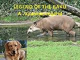 Today Zeus has a Japanese Legend of the Baku