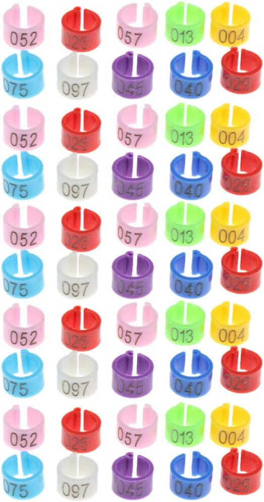 50 Piezas Anillos Identificación Colorido de Raza Plástico Paloma Reutilizable Fácil Poner