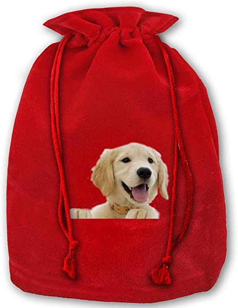 Drawstring Backpack Golden Retriever Dog Rucksack