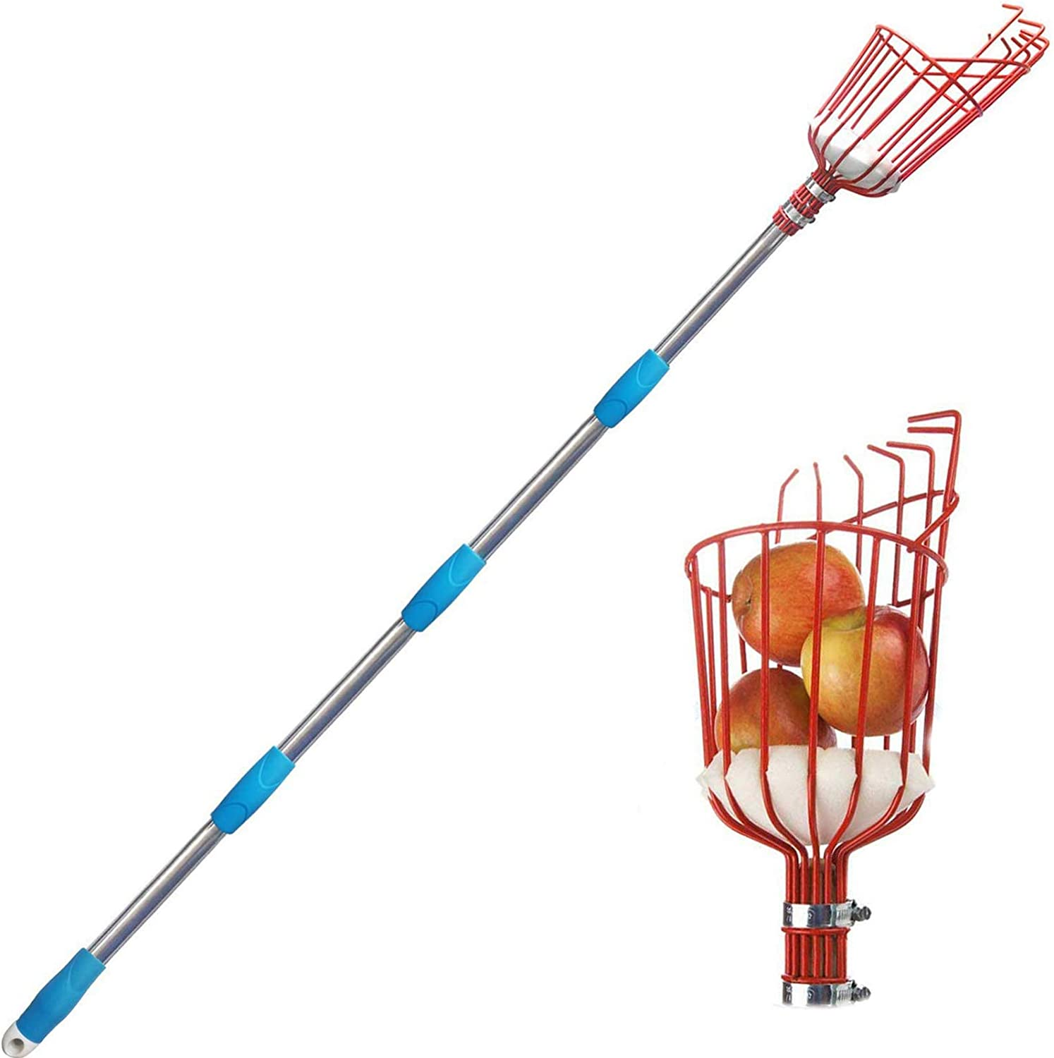 8 FT Height Adjustable Fruit Picker with Big Basket 8 ft Apple Orange Pear Picker with Light-Weight Stainless Steel Pole and Extra Fruit Carrying Bag for Getting Fruits MIYA Fruit Picker Tool