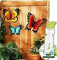 Gift Included- Indoor Outdoor Summertime StyleMetal Wall DecorFence, Porch Hanging Butterflies Set of 3 + FREE Bonus Water Bottle byHomecricket