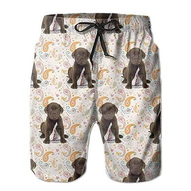 Amazoncom Puppy Chocolate Lab Kisses Swim Beach Trunks Shorts