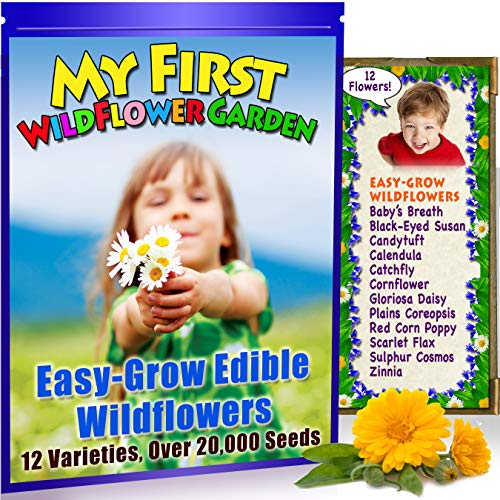 Wild Flowers! Children's Widlfower Garden Seeds ! 12 Bright, Colorful, Easy-to-Grow Flowers. Plants up to 25 Sq Ft .100% Heirloom, Non-GMO. Unique Kids Gift. Fall Planting Garden.