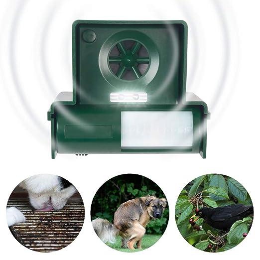 Ahuyentador de perros y gatos Royal Gardineer: Amazon.es: Jardín