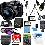 Sony Cyber-shot DSC-RX10 Digital Camera and 2 64 GB SDXC Cards and 2 Batteries Bundle - Includes Camera, Card Reader, Gadget Bag , 64GB Memory Card, Tripod, Battery, High Speed Cable and More