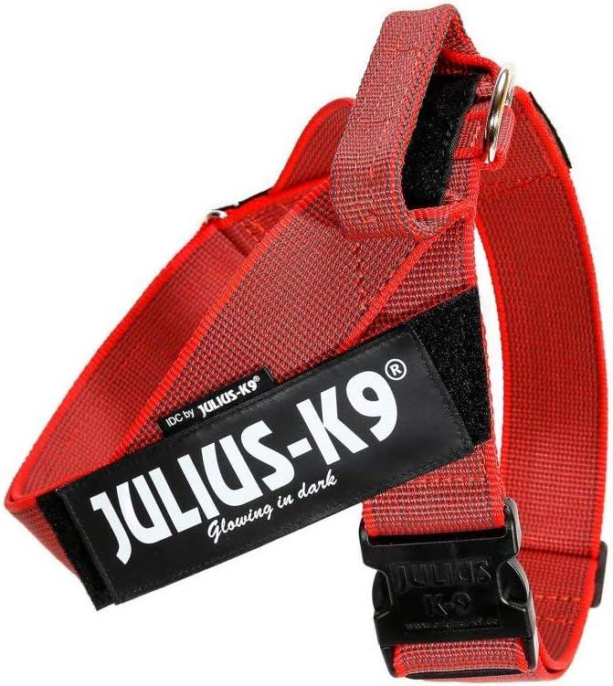 Platz 5 – Julius-K9, Color&Gray IDC-Gurtbandgeschirr