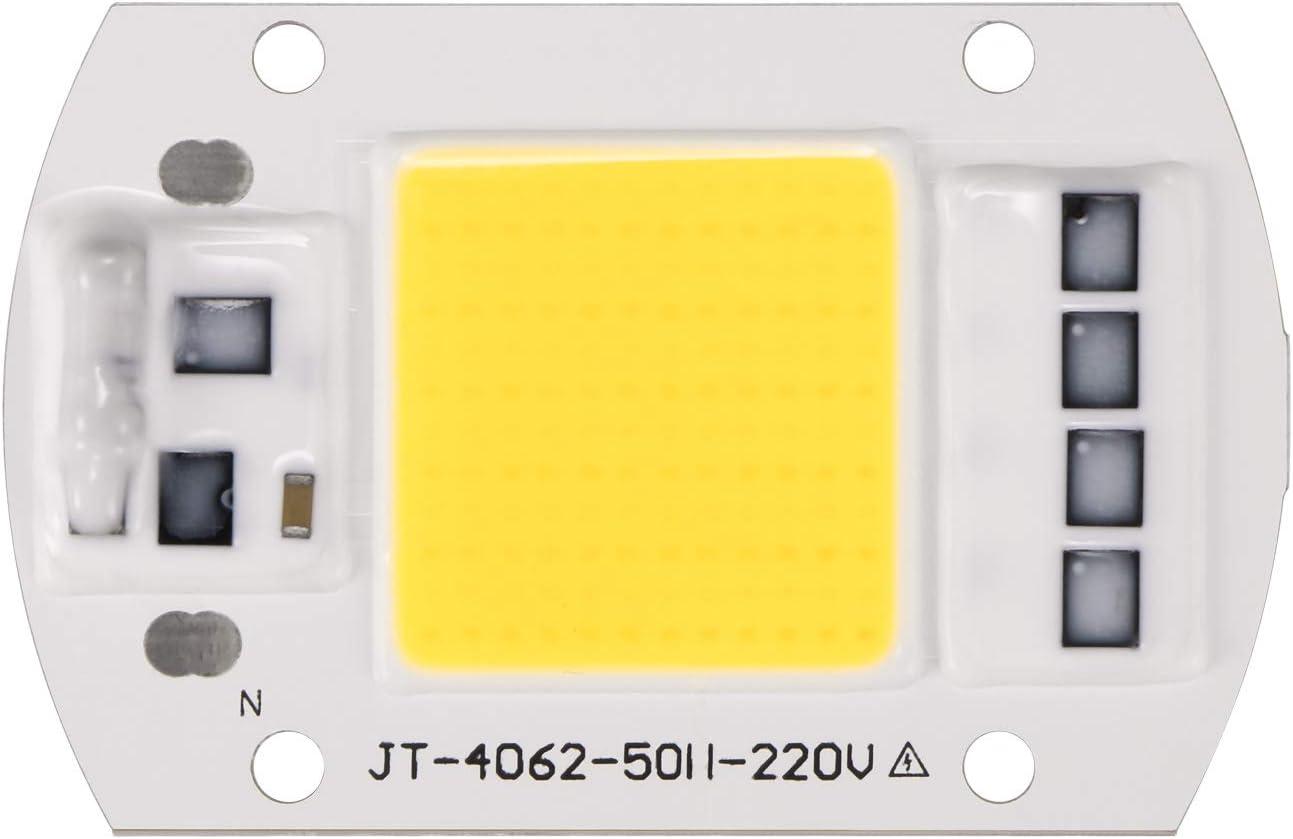 OurLeeme 100W 220V LED COB Chip Inteligente IC Driver para reflector reflector reflector (blanco frío)
