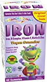 Vitamin Friends Iron Gummies - Vegan, Organic, Kosher, Allergen Free - Your favorite flavor (manufactured on or after November 2017)