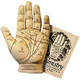 Palmistry Hand Model Resin Sculpture Fortune Telling Palm Reading with Booklet