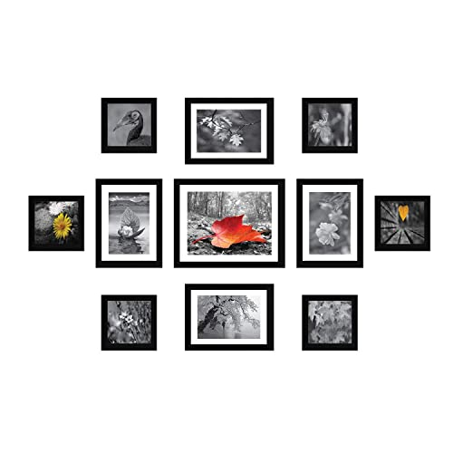 Amazon Brand - Solimo Collage Set of 11 Black Photo Frames (5 X 5 Inch - 6, 6 X 8 Inch - 4 & 8 X 10 inch - 1 )