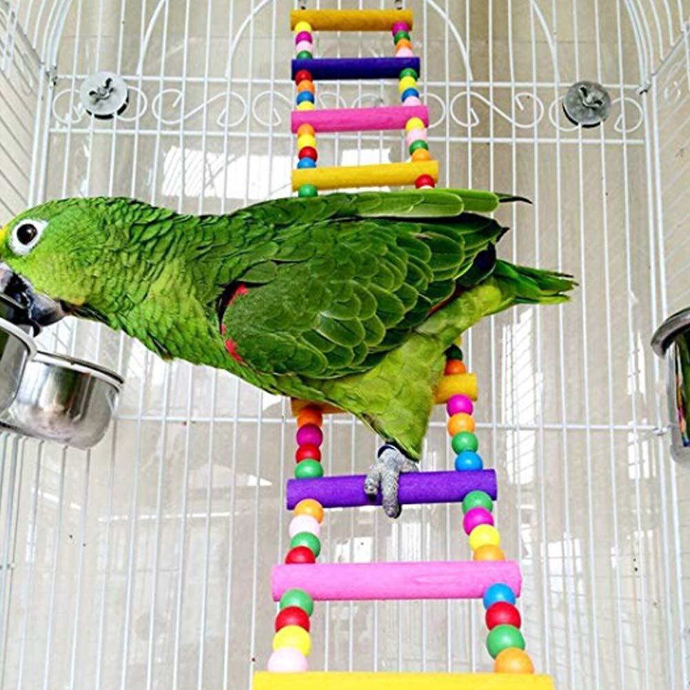 10 scalette Alivier Pappagallo colorato Perline di Legno Scala rampicante Rainbow Bridge Pappagalli Trainning Stand Bird Toy
