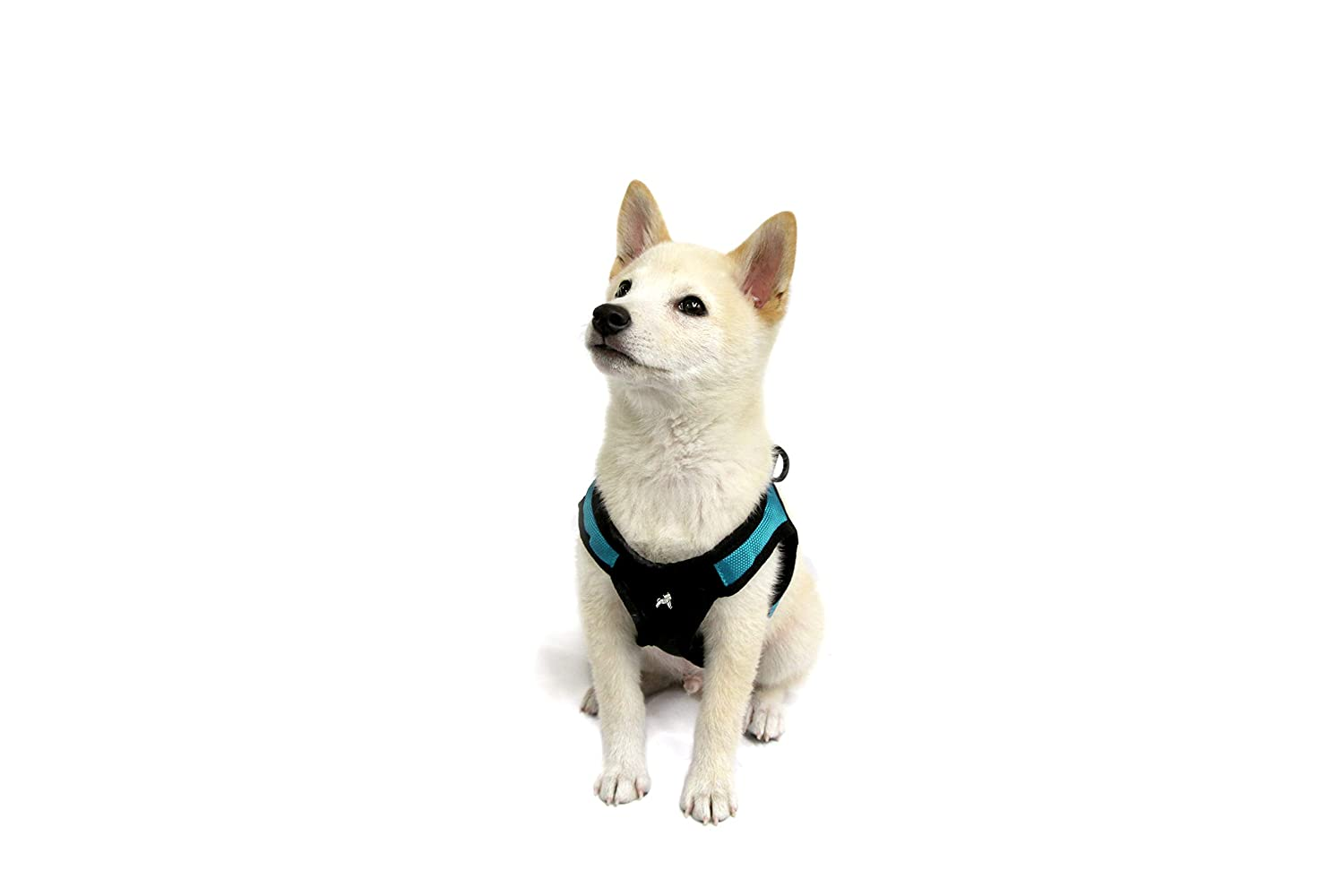 Gooby Escape Free Easy Fit Harness, Small Dog Step-in Harness for Dogs That Like to Escape Their Harness, Turquoise, X-Small