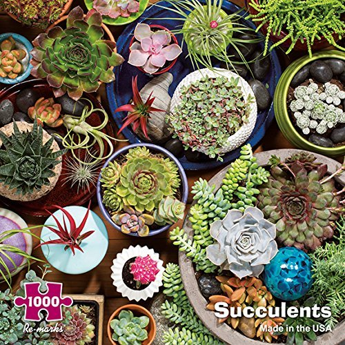 Re-Marks Succulents Cactus Plants 1000 Piece Puzzle Made in USA by Re-Marks