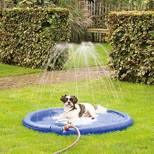 Schnauzerl Wasserspielzeug Sprinkler Matte