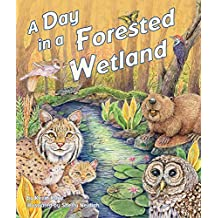 Day in a Forested Wetland, A
