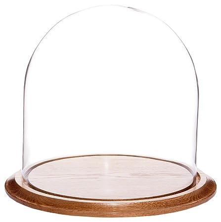 Plymor Brand 11.75 x 12 Glass Display Dome Cloche Oak Wood Base