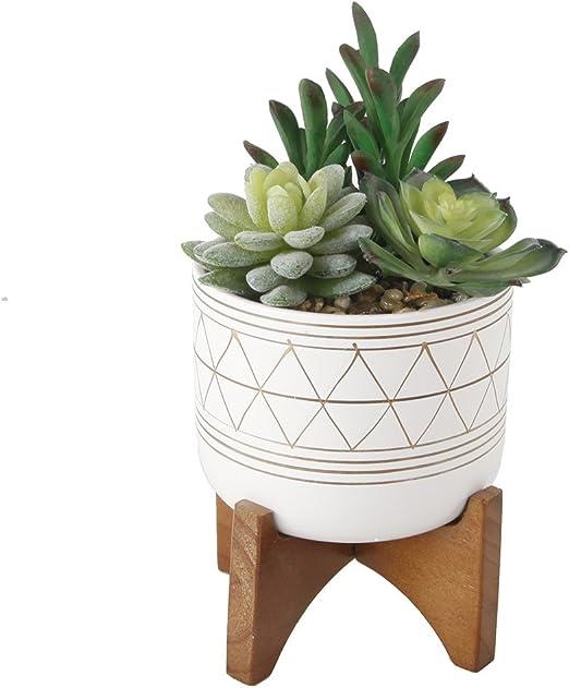 Flora Bunda 9 Inches Tall Faux Cactus Garden in 5 Inches Hand-Painted Geometric Planter Ceramic Pot Planter Mid Century