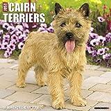 Just Cairn Terriers 2018 Calendar
