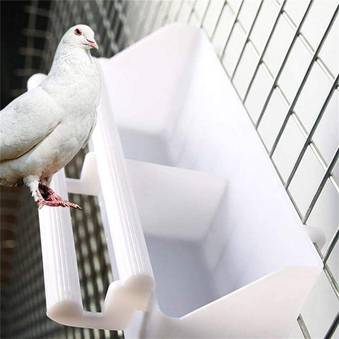 Lucky Farm Alimentador de agua para pájaros con ventana ...