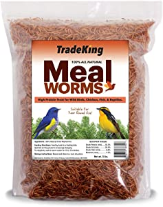 TradeKing 5 lb Dried Mealworms - High Protein Treat for Wild Birds, Chicken, Fish & Reptiles