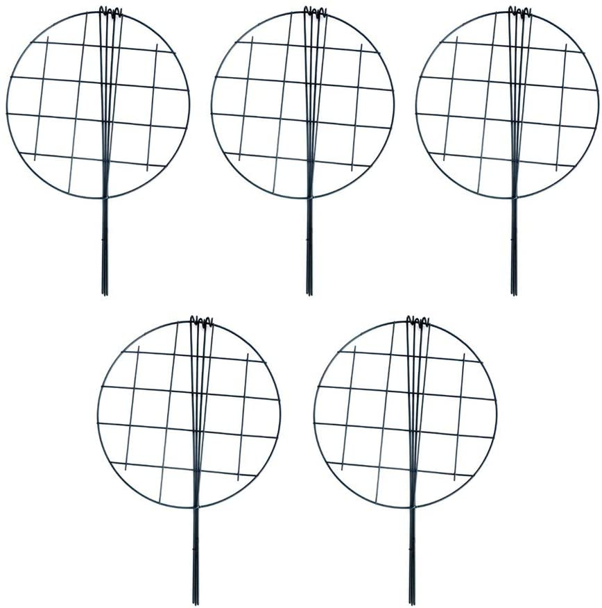 MTB 16 x 24 inch Grow Through Grid Plant Brace Flower Support Rings, Pack of 5