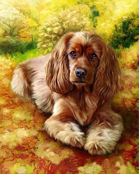 1pc Dog Pet Animal Acrylic Diy Painting By Number Hobby Kit Home Wall