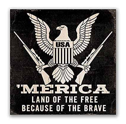 Amazoncom Wood Decor America Land Of The Free Because Of The