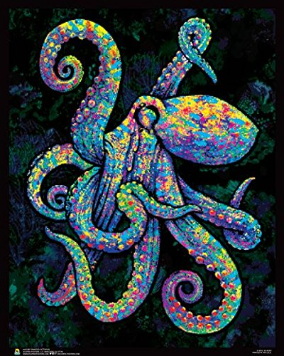 Painted Octopus Flockless Blacklight Reactive Poster