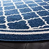 Safavieh Amherst Collection AMT422P Moroccan
