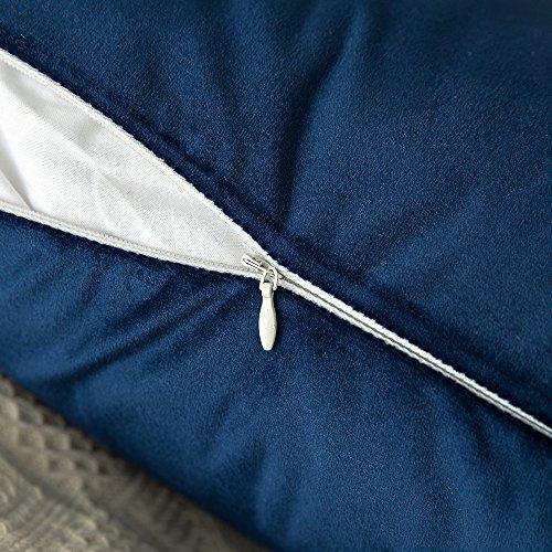 MIULEE Pack of 2 Velvet delicate Soild Throw Pillow Covers