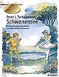 Schwanensee: Ballett in vier Akten. op. 20. Klavier. (Klassische Meisterwerke zum Kennenlernen)