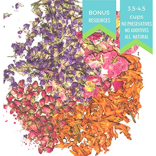 Vivacious Botanical Flower Sampler- Rose Bud, Lily, Satire, Peony - Dried Flowers Soap Making Kit - Bath Bomb Kit - Pressed Flowers Herbs for Resin -Melt and Pour Soap Suppliers -Bonus