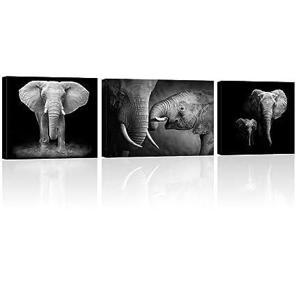 Amazon.com: Visual Art Decor Black and White Elephant Canvas Prints ...