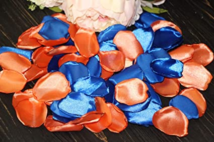 Amazoncom Beach Wedding Orange Rose Petals Royal Blue