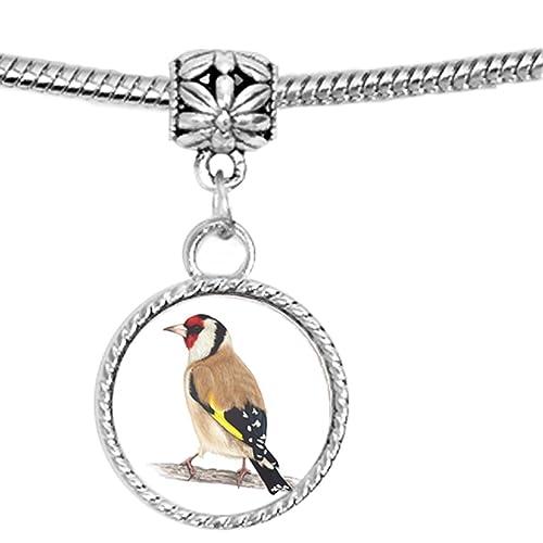 Realista ilustración de un pájaro Jilguero y lindo encanto pulsera: Amazon.es: Joyería