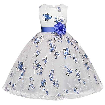 Feixiang Ropa de los niños Flor niño niña Vestido Princesa Oficial Belleza Vacaciones Boda Dama de