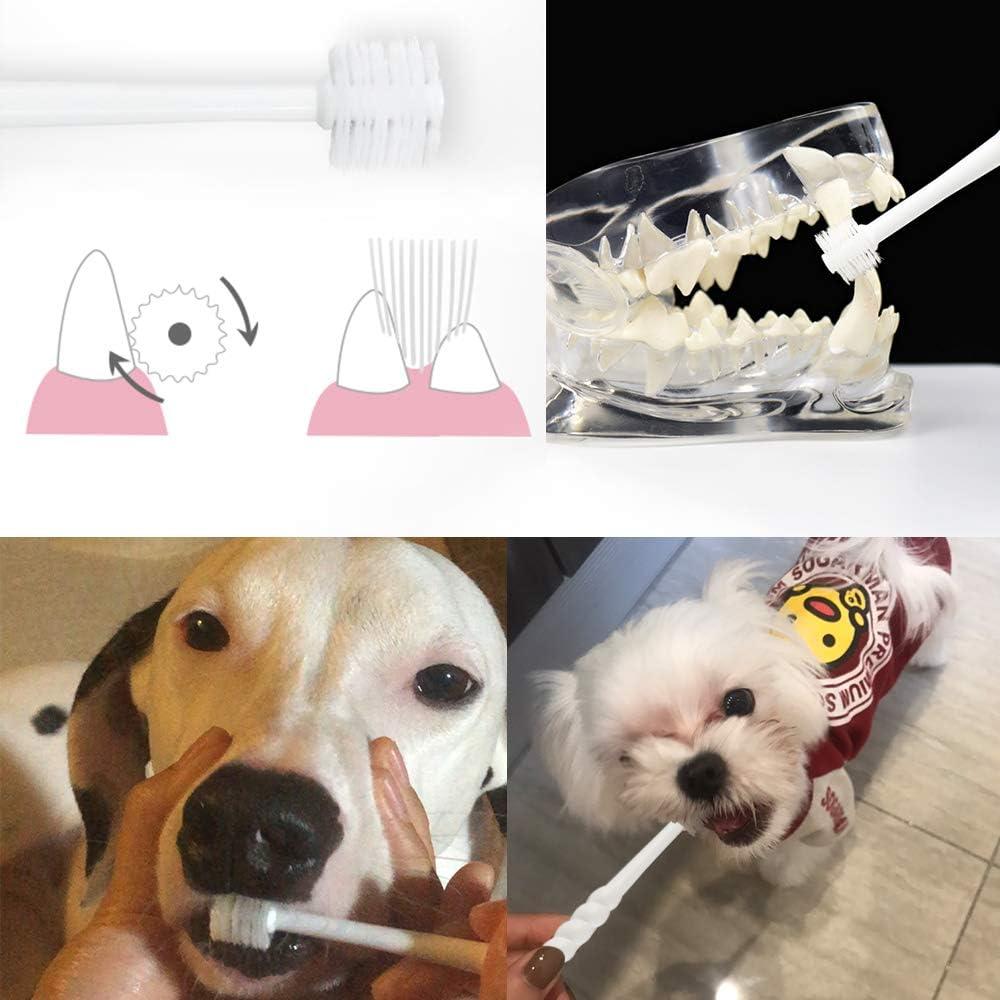 7 best dog toothbrush 1