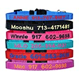 Personalized Nylon Cat Collar Break Away with Bell - Custom Embroidered Text ID Collars with Pet Name and Phone Number