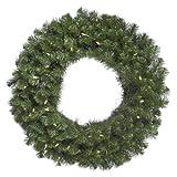 Vickerman 48'' Douglas Fir Wreath with 200 Warm White LED Lights