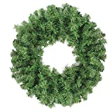 Northlight Colorado Spruce 2-Tone Artificial Christmas Wreath, Green