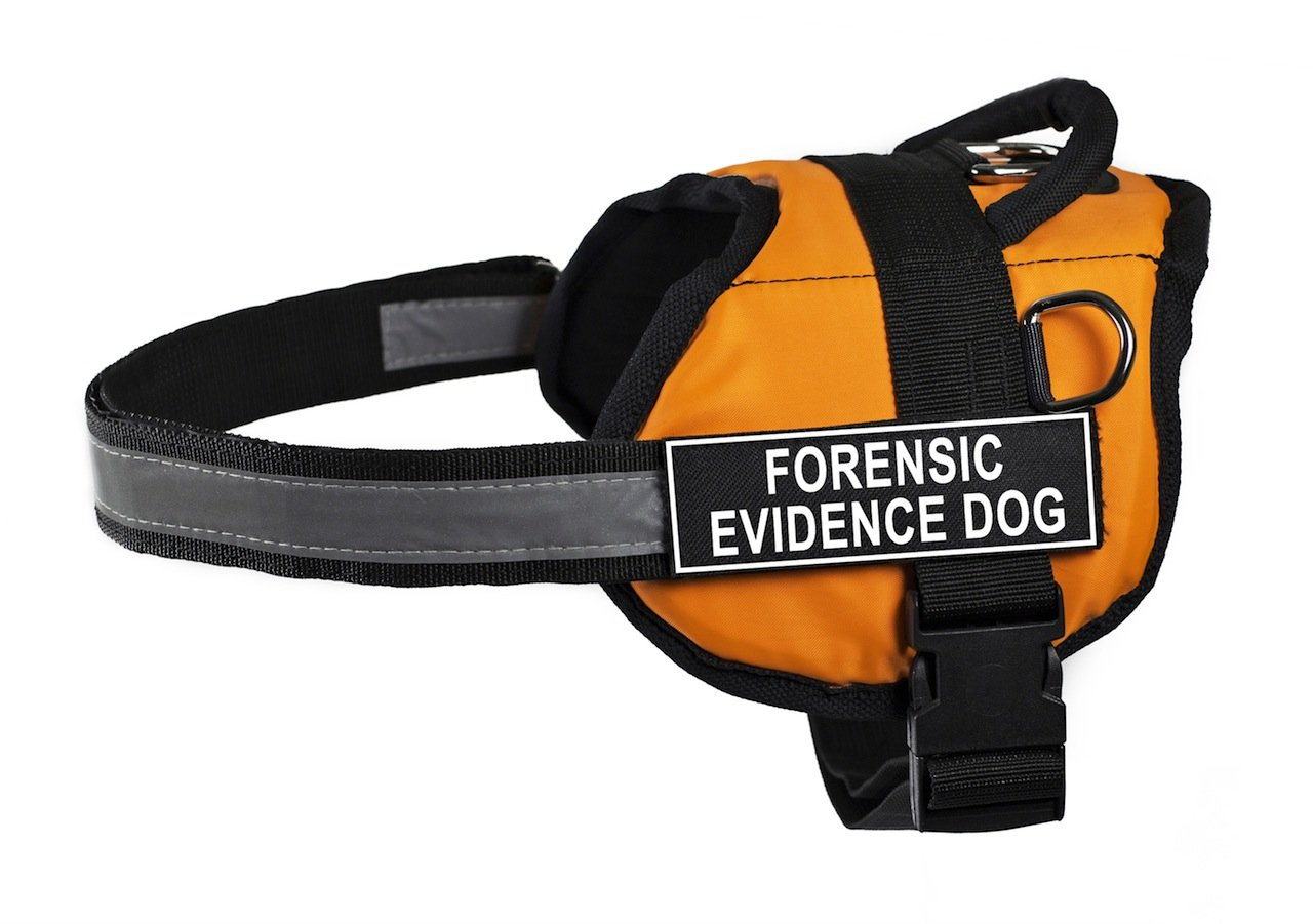 Dean & Tyler 21 to 26-Inch Forensic Evidence Dog Works Harness, X-Small, orange Black