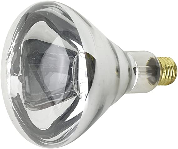 Satco 04885-250R40//1//TF S4885 Heat Lamp Light Bulb