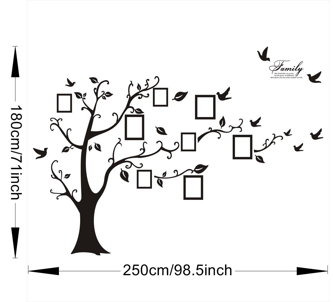 Amazon sweet memories photo frame wall decal family tree amazon sweet memories photo frame wall decal family tree photo gallery wall decal baby amipublicfo Gallery