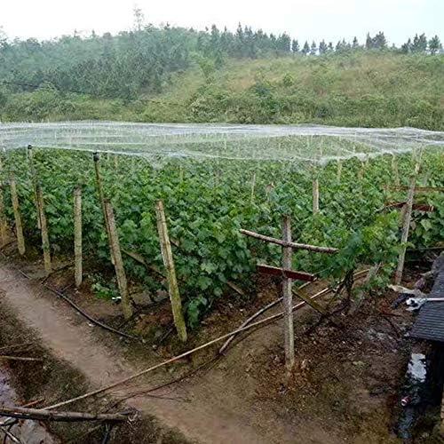 GREENWISH Red para Plantas de jardín, Protege Plantas y árboles ...