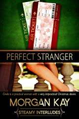 Perfect Stranger: A Romantic Comedy Kindle Edition