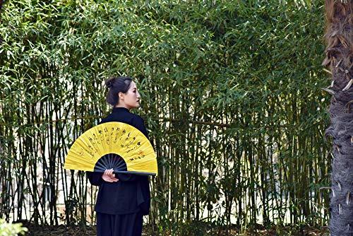 Authentic Classical Printing Dancing Fan Golden 33CM Martial Arts Fan tai chi Fan kung fu Fan Bone Dragon and Fan PVC Bamboo
