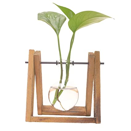 2f3961ed9c9 QHQ Plant Glass Container with Wooden Frame Glass Vase Frame Home  Decoration Hydroponic Glass Flower Green