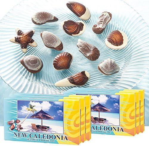 ニューカレドニアお土産 シーシェルチョコレート 1箱10粒入り×6箱セット