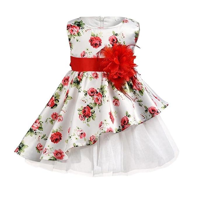 5234ed252c2a6 Moonker Girl Dress,Toddler Baby Girls Kids Flower Print Bow Big Red Flower  Zipper Formal